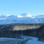 An Alaskan Return