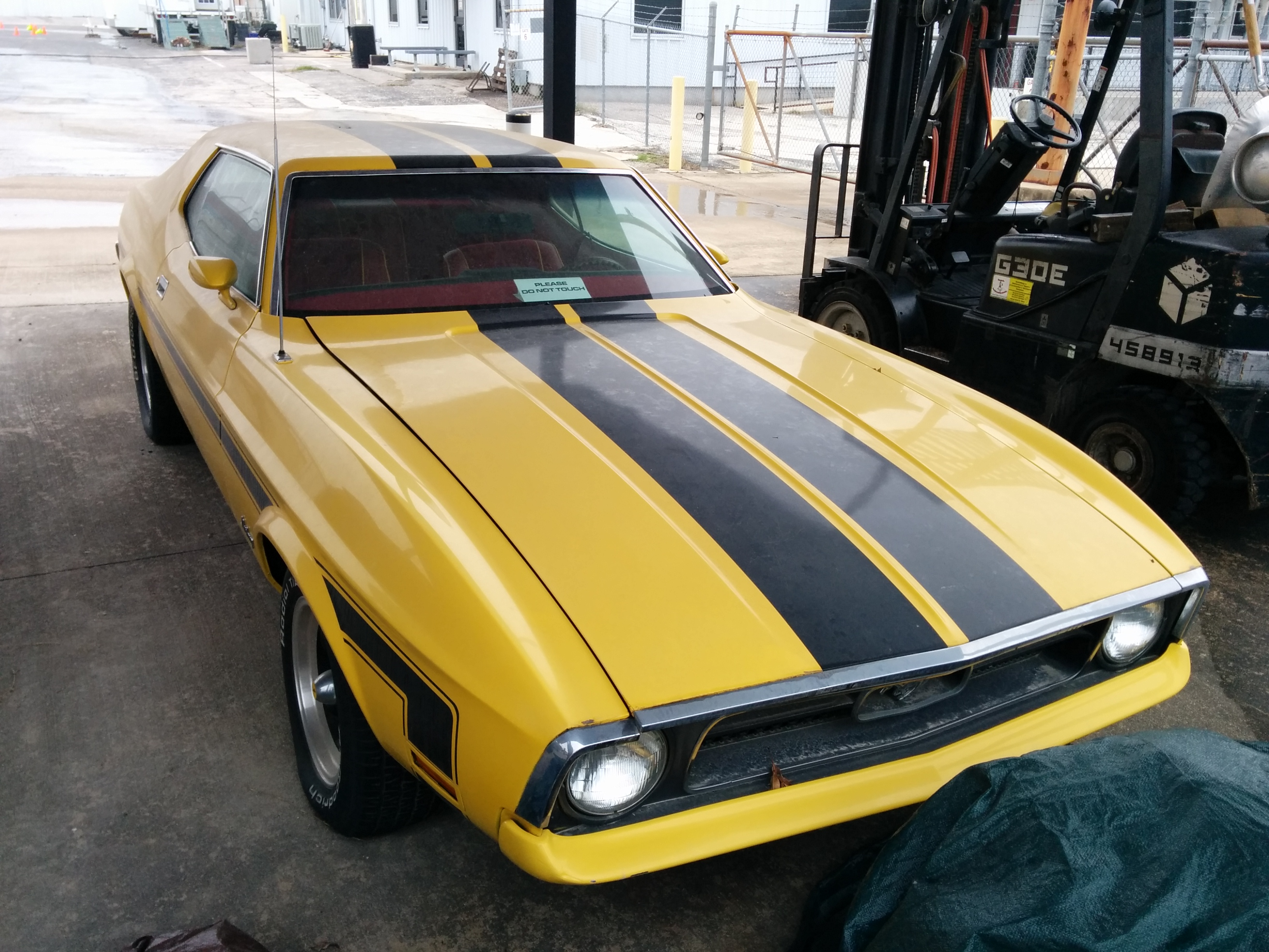 Death proof ford mustang