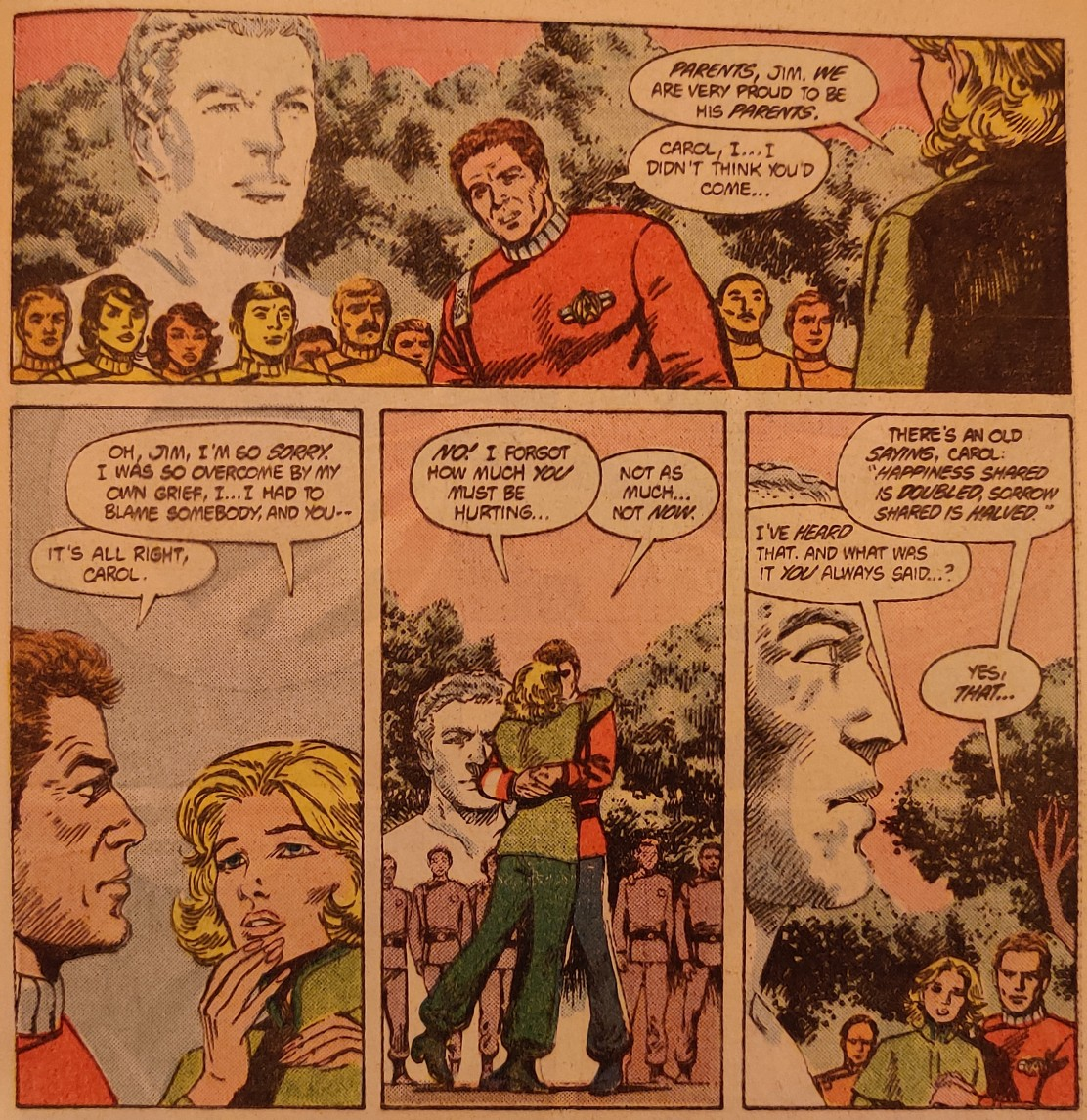 DC Comics Star Trek Issue 9 - David's Memorial